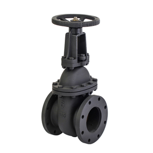 6 Cast Iron Rising Gate Valve-ANSI 125