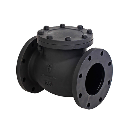 6 Cast Iron Swing Check Valve-ANSI 125