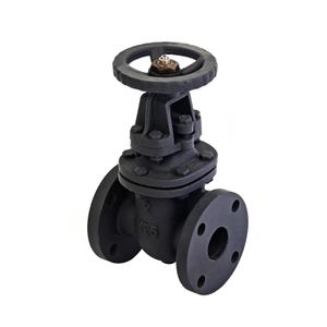 2 Cast Iron Rising Gate Valve-ANSI 125