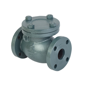 1.5 Cast Iron Swing Check Valve-ANSI 150